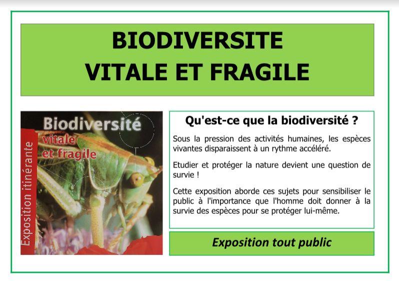 Expo Sancergues Biodiversité